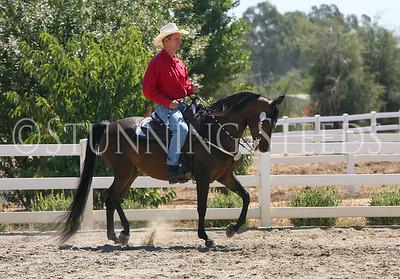 Lovey of Stilwell-saddle
