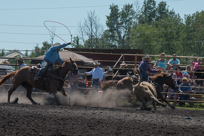 Roping Sunday 2015