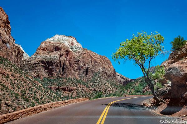 3- Drive to Bryce via Zion NP