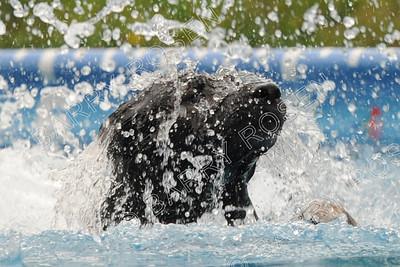 5978 Sunday Splash 7