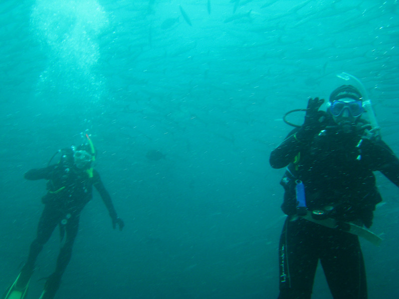 Diving in the Galapagos (256 of 392)