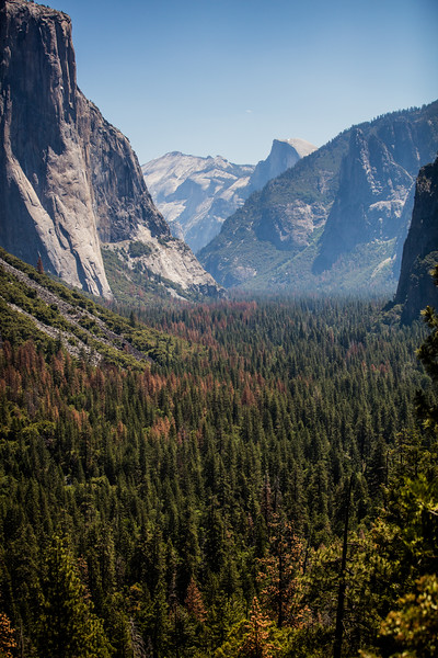 Yosemite_2016_Park-19.jpg