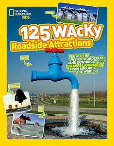 Wacky Roadside Attractions | Gift Ideas for Travelers