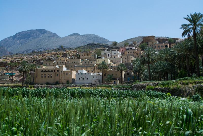 Jebel Akhdar-0361.jpg