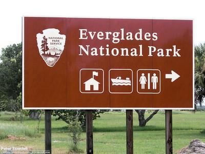 Everglades and Naples