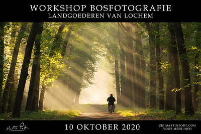 2020-10-10 Workshop bosfotografie (Dutch)