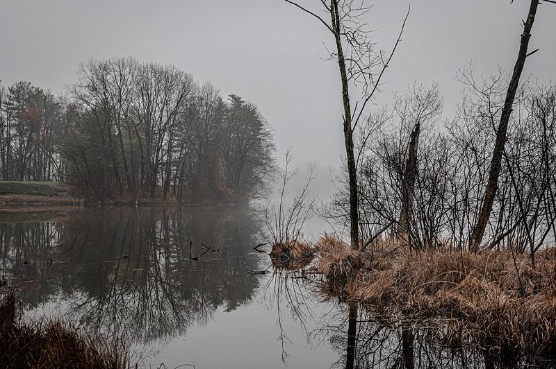 Tkanksgiving River Walk - 20201126 - 023.jpg