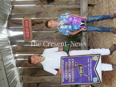 08-21-18 Defiance County Fair winners