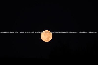 2014-October Lunar Eclipse in Houston Texas