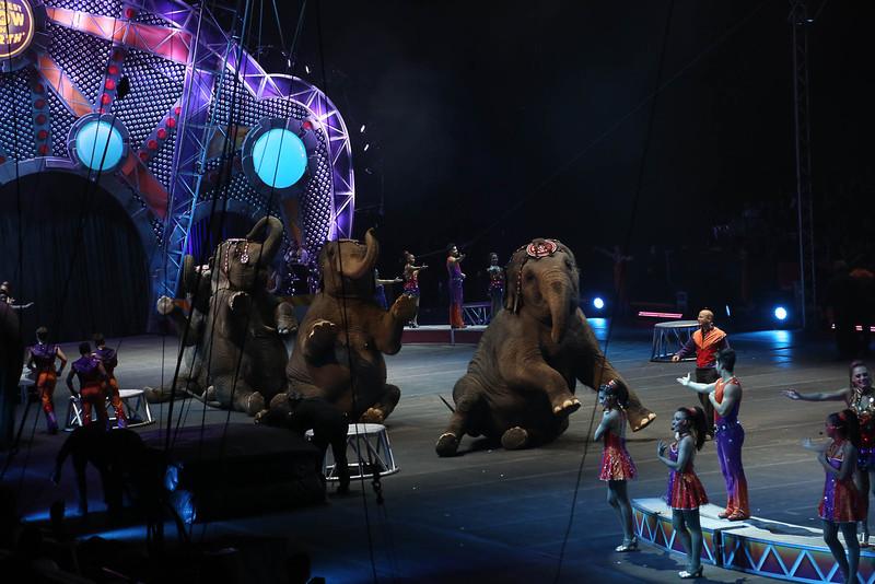 Circus_32.jpg