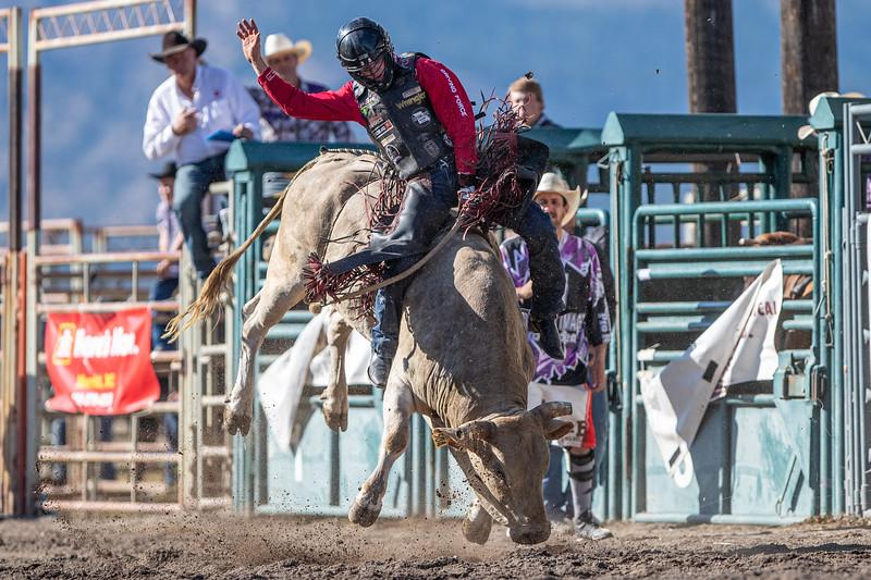 2019 Rodeo 5 (115 of 574).jpg