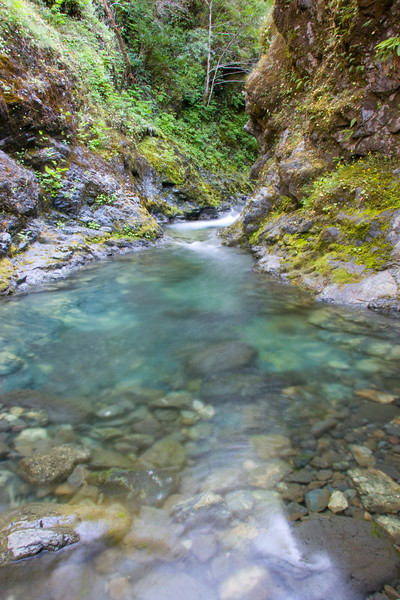 Just one of the beautiful green pools up East Creek Gorge.