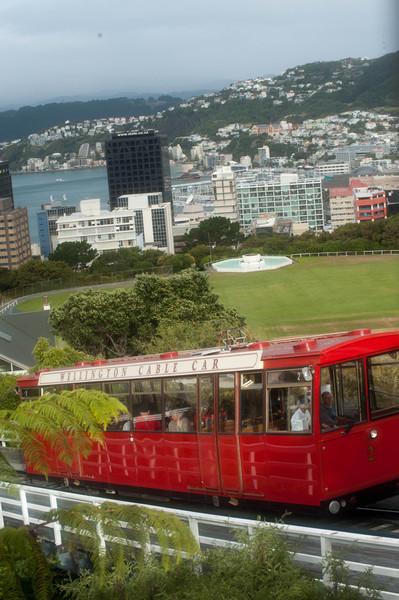 Wellington5633.jpg