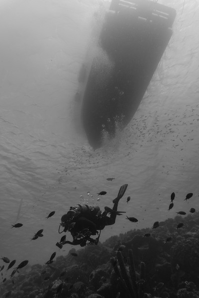 diver boat bw bon18.jpg