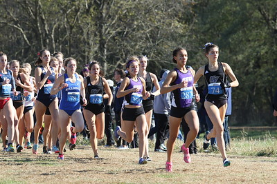 Womens Start - 2019 NCAA DII Cross Country Midwest Regional