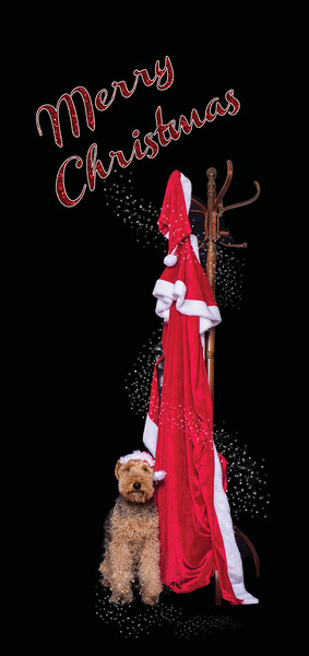 xmascard2for web site.jpg