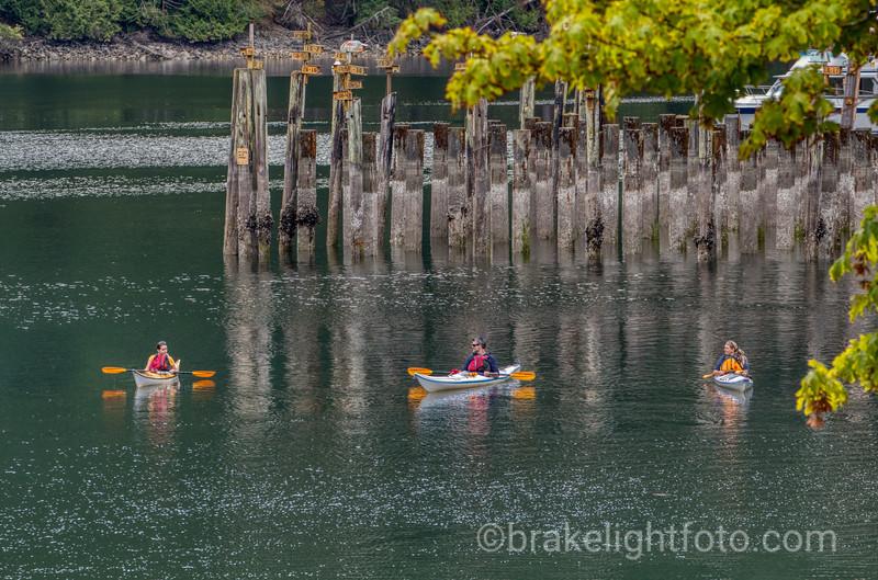 Kayaks in Tod Inlet
