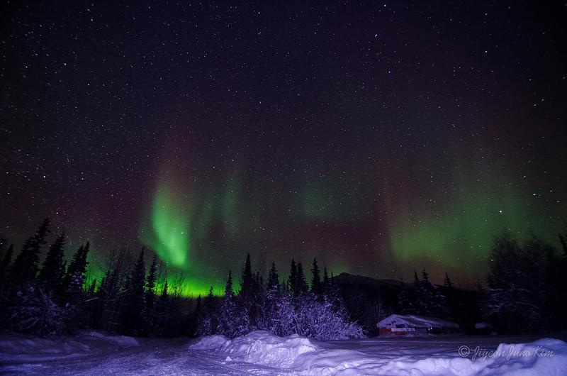 USA-Alaska-Wiseman-Aurora-2830.jpg