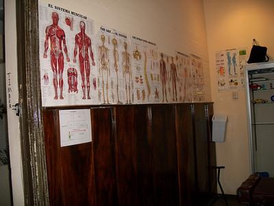 Chiropractor Shahin Ravery - San Jose, Costa Rica