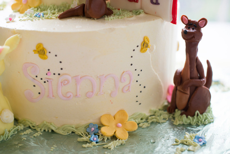 sienna-birthday-party-427-05142014.jpg