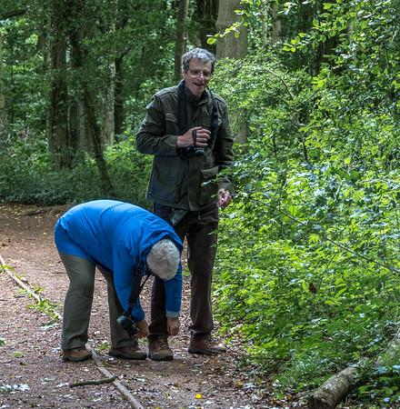 Standish Wood 14th June 2018