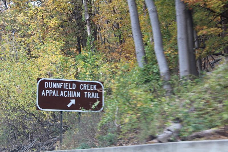 IMG_7420 Dunnfield Creek Falls (2).JPG