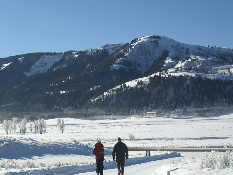 Nancy Winslow, Doug Webber, Buffalo Ranch, Lamar Valley