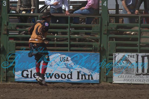 1 Glenwood Ketchum Kalf 2013 Bulls ,Cow Milking