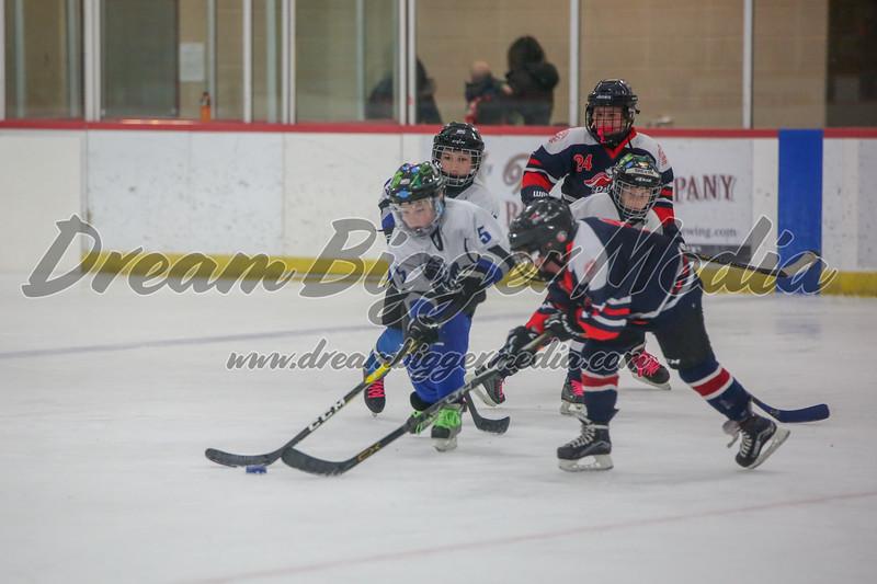 Blizzard Hockey 111719 7869.jpg