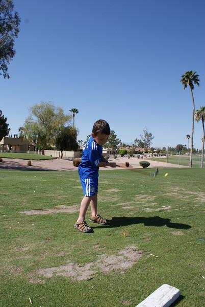 Phoenix 2010