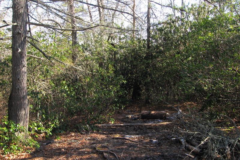 John Rock Trail -- 2,850'