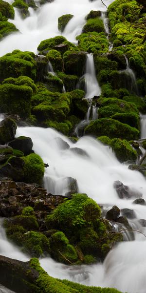 Mossy Cascades