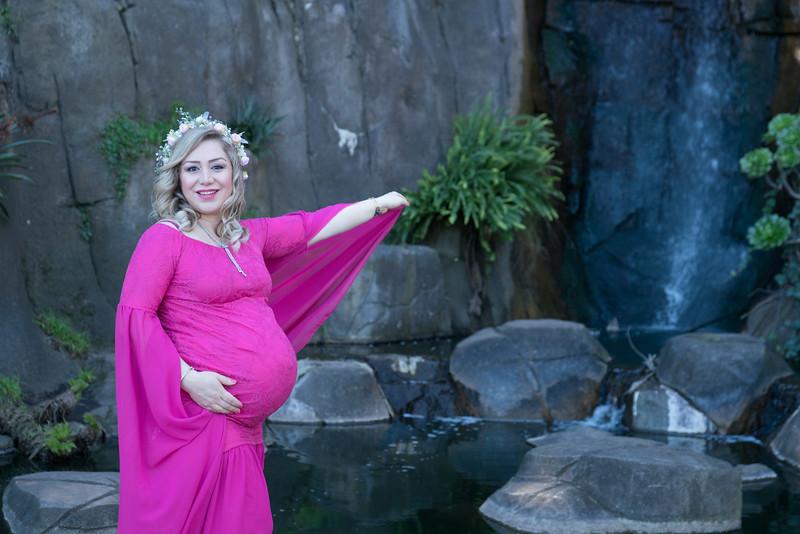 Maternity -08567.jpg