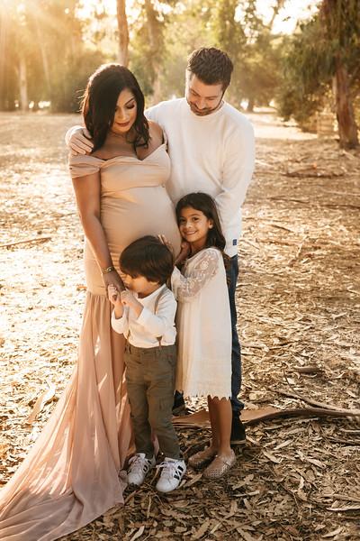 Adriena's Maternity Session-2.jpg