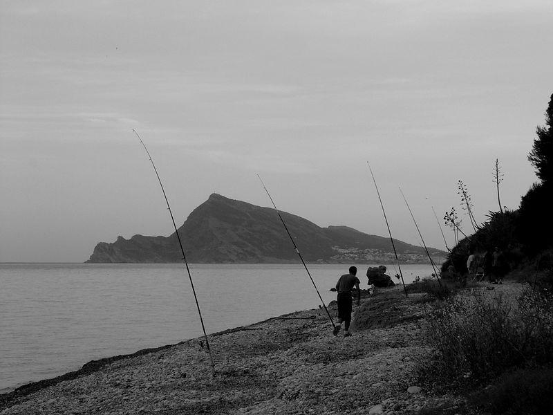 med sea fishing