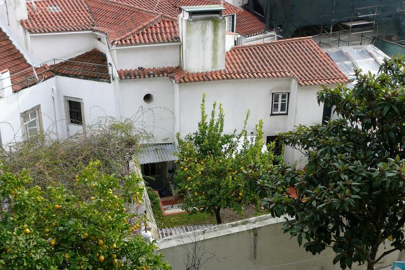 Private Gardens Outside Castelo de São Jorge. Alfama, Lisbon