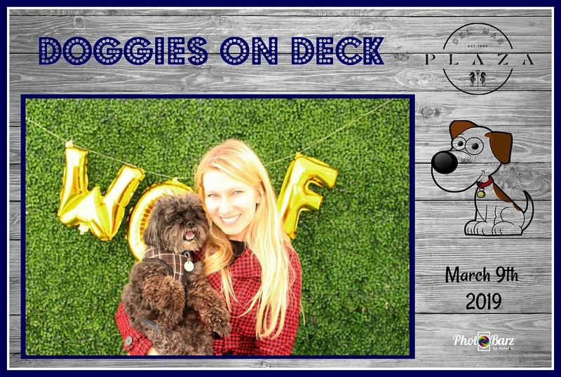 Doggys on Deck30.jpg