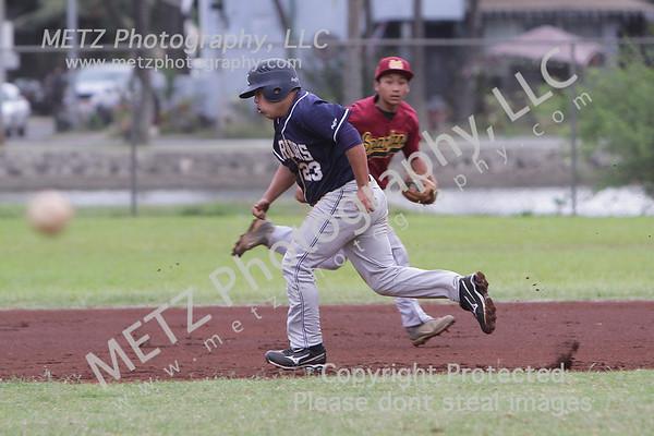 High School Baseball 2012