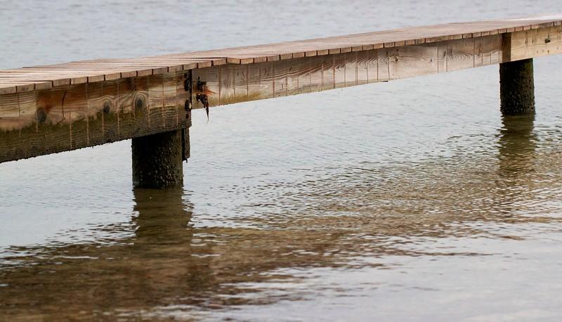 egret cove dock