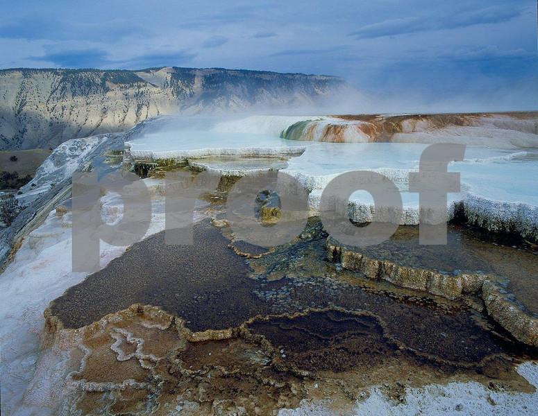 Mammoth Hot Springs, YNP 0904.jpg