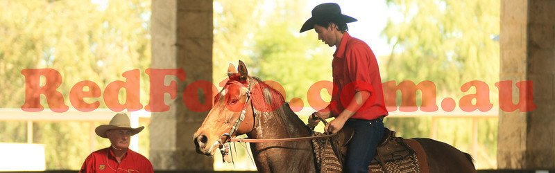 Ian Francis Horsemanship Clinic