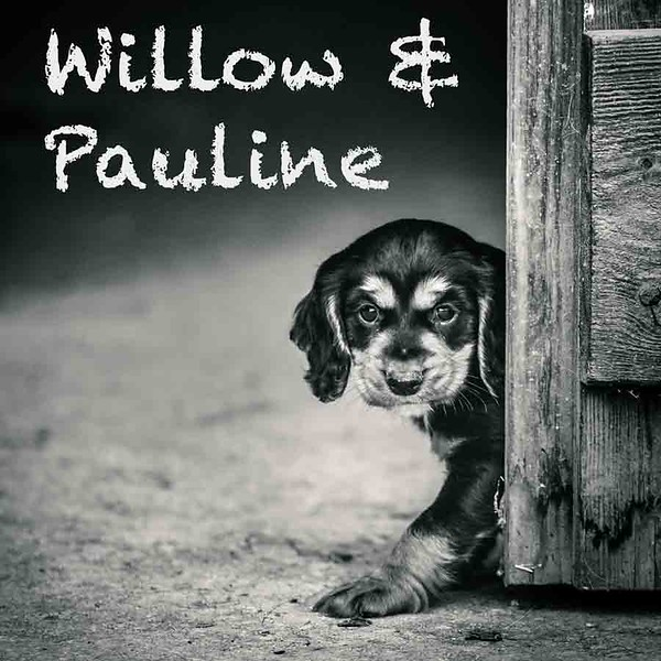 Pauline-Icons.jpg