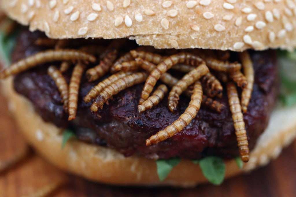 . A pigeon burger with BBQ Meal Worms is prepared for a customer on a \'Pop Up\' stand at One New Change on August 15, 2013 in London, England.  The pest control specialist, Rentokill are celebrating their 85th anniversary, and for one day only were giving passers by the chance to try sweet chilli pigeon burgers, salted weaver ants, BBQ Mole Crickets and chocolate dipped worms amongst other things on their stand.  (Photo by Dan Kitwood/Getty Images)