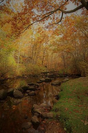 """""""Autumn Stream"""" (photography) by Kathy Brady"""