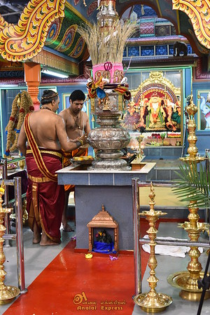 ANALAITIVU IYANAR TEMPLE of CANADA Aug 9, 2014 Day 9 (Chariot festival)