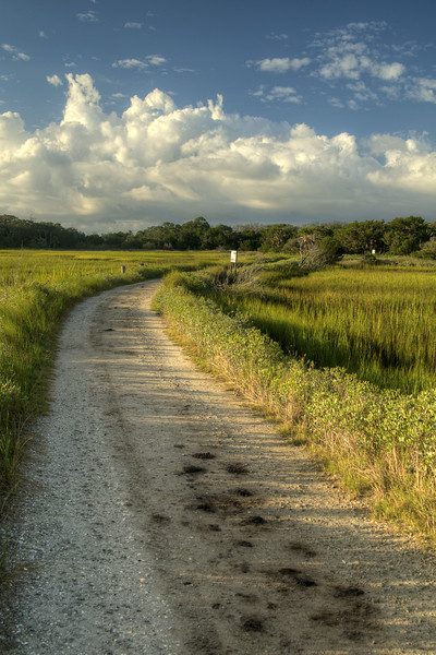 The sandy path leading from the parking area to Deadwood Beach at Botany Bay Plantation Heritage Preserve and Wildlife Management Area in Edisto Beach, SC on Friday, August 29, 2014. Copyright 2014 Jason Barnette