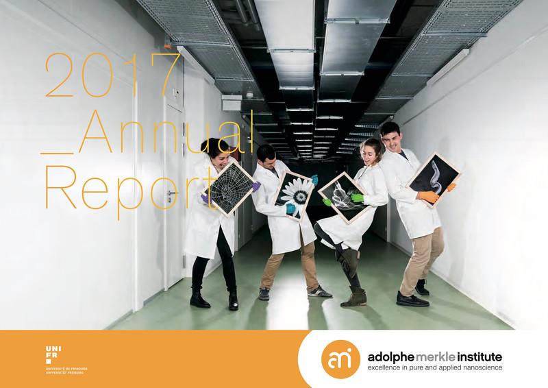 Adolphe Merkle Institute // 2017 Annual Report