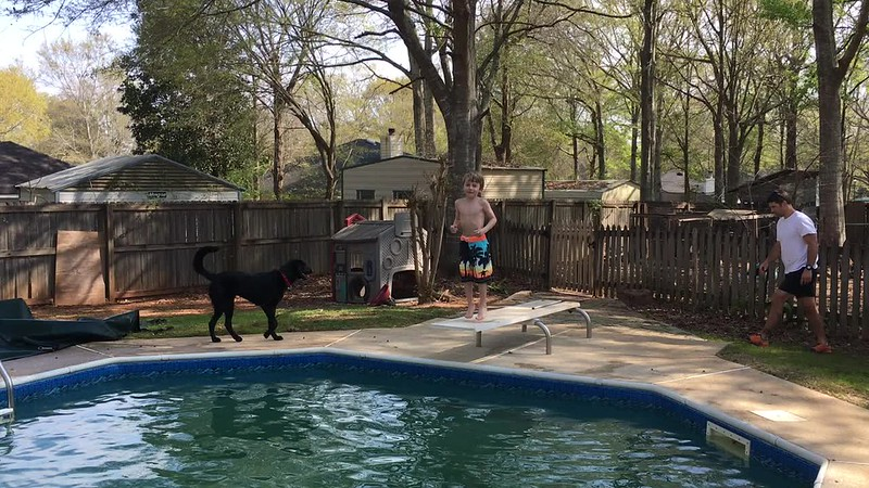 Luca opened pool season with a jump into the frigid water.