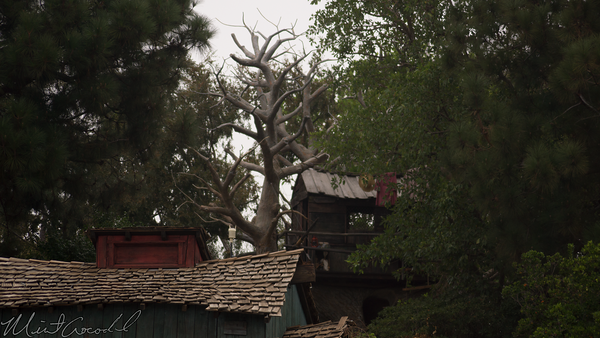 Disneyland Resort, Disneyland, Frontierland, Tom Sawyer Island