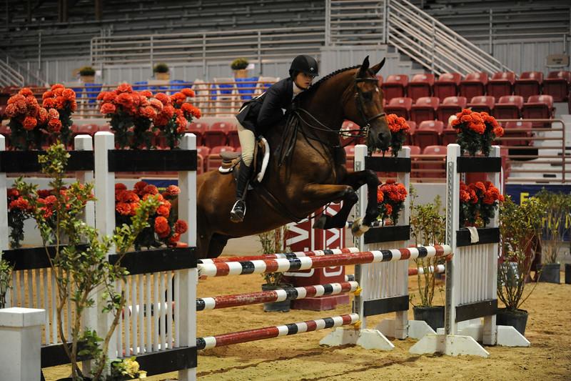 Horse show (82).jpg